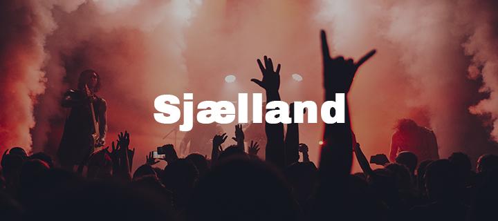 Dj på sjælland